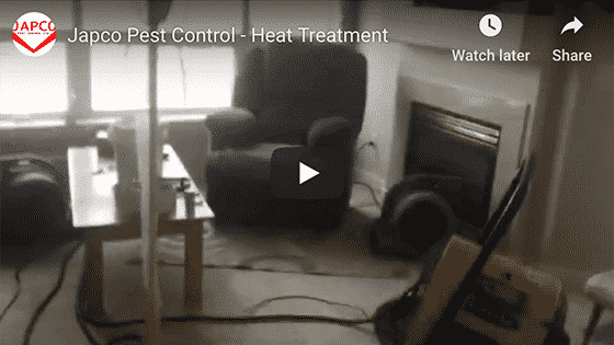 Japco Pest Control Heat Treatment